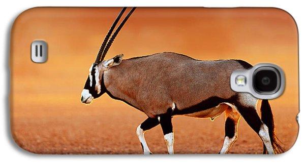 Glowing Galaxy S4 Cases - Gemsbok on desert plains at sunset Galaxy S4 Case by Johan Swanepoel