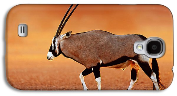 Open Photographs Galaxy S4 Cases - Gemsbok on desert plains at sunset Galaxy S4 Case by Johan Swanepoel