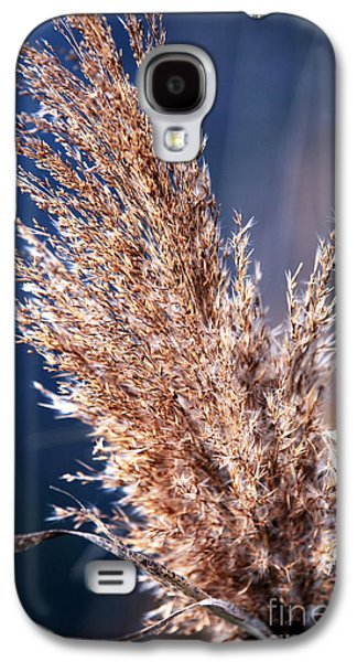 Gentle Nature Galaxy S4 Case by John Rizzuto