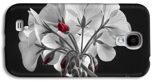 Red Geraniums Galaxy S4 Cases - Geranium Flower In Progress  Galaxy S4 Case by James BO  Insogna