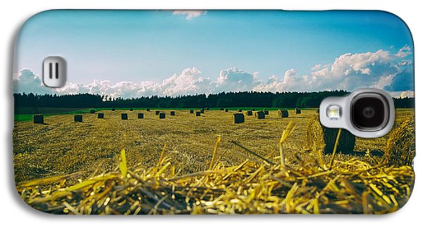 Hayfield Galaxy S4 Cases - German Hayfield Galaxy S4 Case by Mountain Dreams