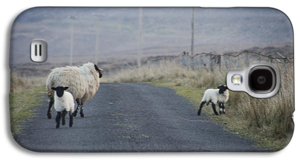 Sheep Digital Art Galaxy S4 Cases - Get Out of the Road Galaxy S4 Case by Bill Cannon