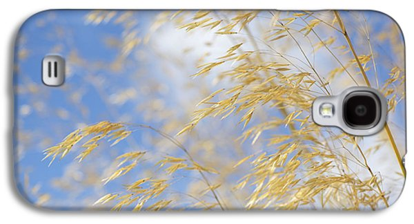 Seed Galaxy S4 Cases - Giant Feather Grass Galaxy S4 Case by Tim Gainey