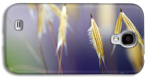 Abstract Nature Galaxy S4 Cases - Giant feather grasses  Galaxy S4 Case by Tim Gainey