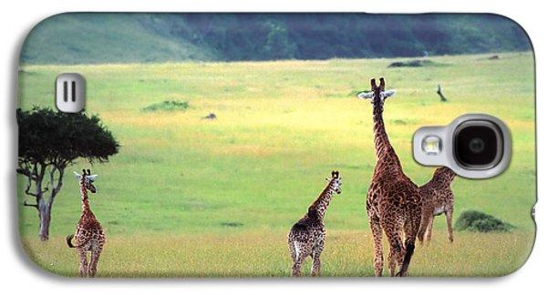 Giraffe Galaxy S4 Case by Sebastian Musial