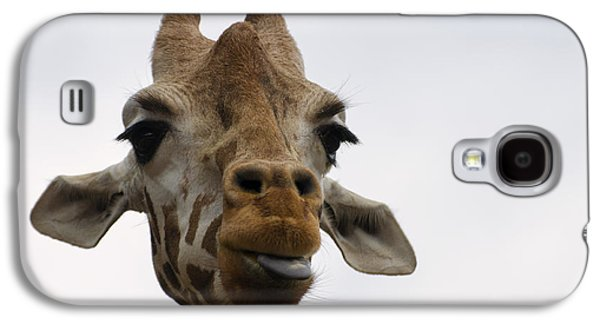 Giraffe Digital Galaxy S4 Cases - Giraffe sticking out tongue Galaxy S4 Case by Chris Flees