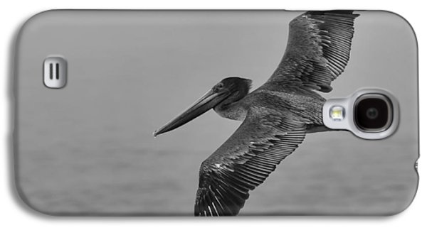 Gliding Pelican In Black And White Galaxy S4 Case by Sebastian Musial