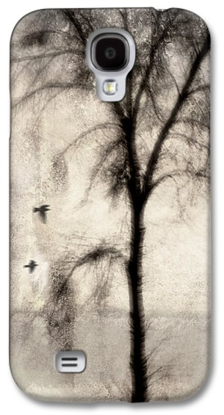 Rectangles Digital Galaxy S4 Cases - Glimpse of a Coastal Pine Galaxy S4 Case by Carol Leigh