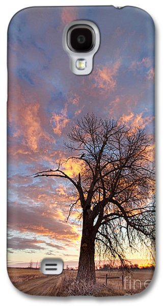 Landscape Acrylic Prints Galaxy S4 Cases - Glorious Morning Galaxy S4 Case by James BO  Insogna
