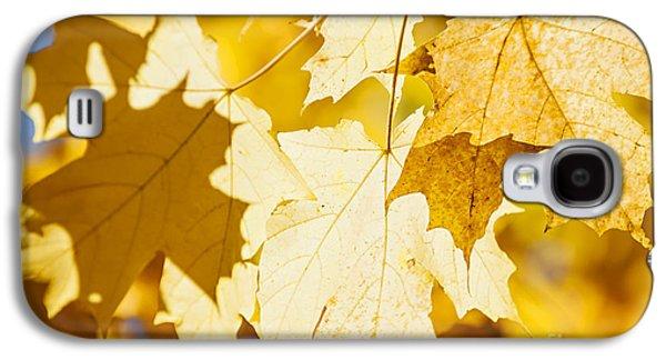 Maple Season Galaxy S4 Cases - Glowing fall maple leaves Galaxy S4 Case by Elena Elisseeva