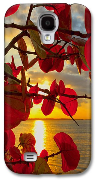 Grape Leaf Galaxy S4 Cases - Glowing Red Galaxy S4 Case by Stephen Anderson