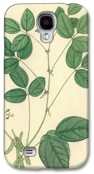 Glycine Max Galaxy S4 Case by Natural History Museum, London