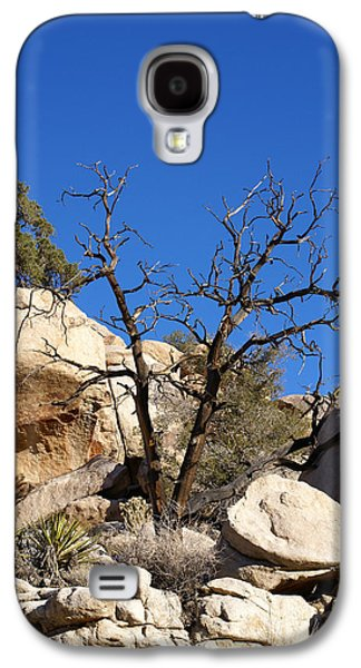 Gnarly Galaxy S4 Cases - Gnarly Joshua Tree Galaxy S4 Case by Barbara Snyder