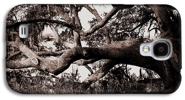 Gnarly Galaxy S4 Cases - Gnarly Limbs at the Ashley River in Charleston Galaxy S4 Case by Susanne Van Hulst