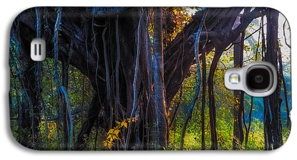 Tree Roots Galaxy S4 Cases - Goan Banyan Tree. India Galaxy S4 Case by Jenny Rainbow