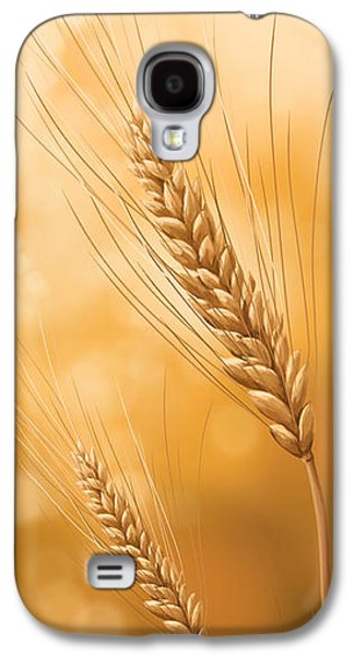 Sunset Posters Galaxy S4 Cases - Gold grain Galaxy S4 Case by Veronica Minozzi