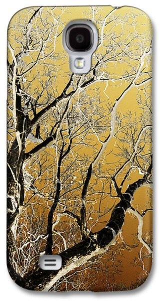 Rollosphotos Digital Art Galaxy S4 Cases - Gold Tree Art Galaxy S4 Case by Christina Rollo