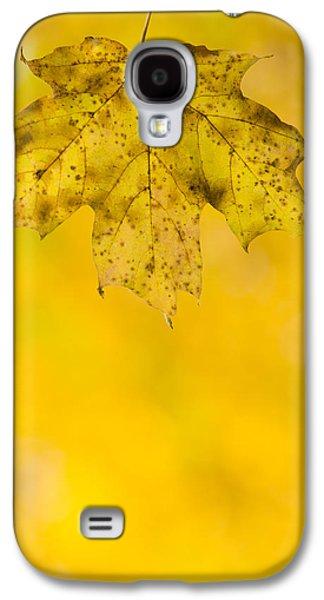Autumn Foliage Photographs Galaxy S4 Cases - Golden Autumn Galaxy S4 Case by Sebastian Musial