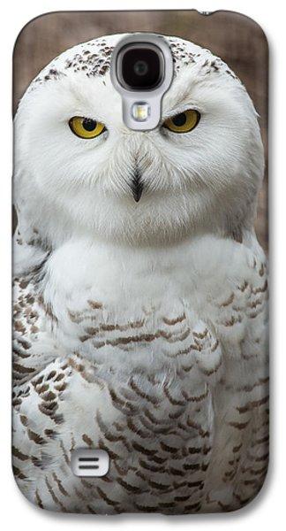 Snowy Galaxy S4 Cases - Golden Eye Galaxy S4 Case by Dale Kincaid