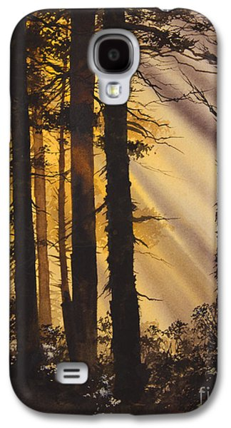 Landscape Framed Prints Galaxy S4 Cases - Golden Forest Light Galaxy S4 Case by James Williamson