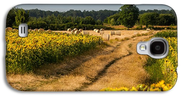 Landscapes Photographs Galaxy S4 Cases - Golden hour on country road Galaxy S4 Case by Davorin Mance