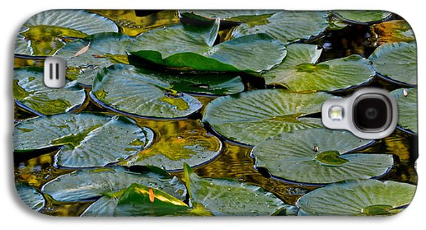 Lilly Pad Galaxy S4 Cases - Golden Lilly Pads Galaxy S4 Case by Frozen in Time Fine Art Photography