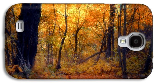 Tara Turner Galaxy S4 Cases - Golden Moments Galaxy S4 Case by Tara Turner