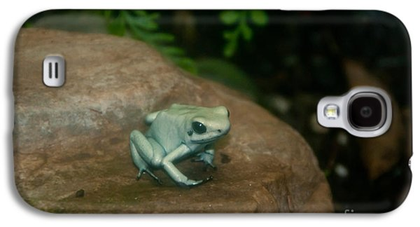 Morph Galaxy S4 Cases - Golden Poison Frog Mint Green Morph Galaxy S4 Case by Mark Newman