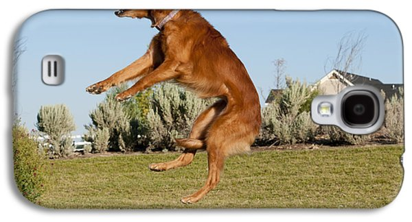 Golden Retriever Catching A Ball Galaxy S4 Case by William H. Mullins