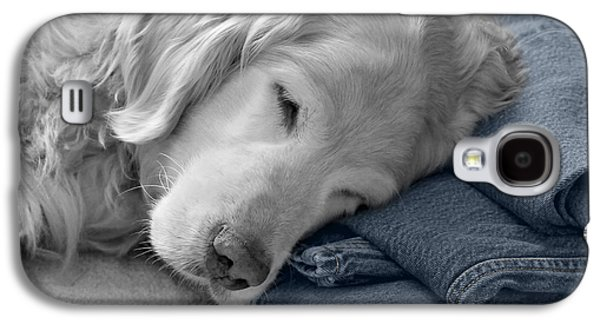 Levi Galaxy S4 Cases - Golden Retriever Dog Forever on Blue Jeans Monochrome Galaxy S4 Case by Jennie Marie Schell