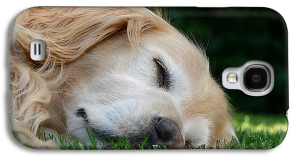 Sleeping Dog Galaxy S4 Cases - Golden Retriever Dog Sweet Dreams Galaxy S4 Case by Jennie Marie Schell