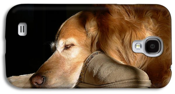 Sleeping Dog Galaxy S4 Cases - Golden Retriever Dog with Masters Slipper Galaxy S4 Case by Jennie Marie Schell