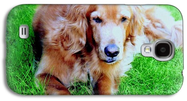 Temperament Galaxy S4 Cases - Golden Retriever Galaxy S4 Case by Kay Novy