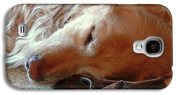Sleeping Dog Galaxy S4 Cases - Golden Retriever Sleeping with Dads Slippers Galaxy S4 Case by Jennie Marie Schell