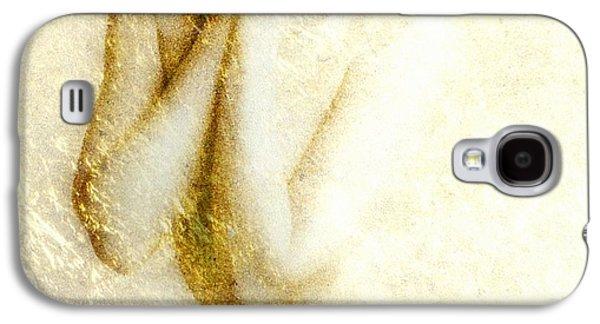 Shower Digital Galaxy S4 Cases - Golden shower Galaxy S4 Case by Gun Legler
