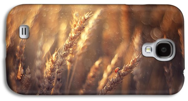 Summer Photographs Galaxy S4 Cases - Golden Summer Galaxy S4 Case by Magda  Bognar