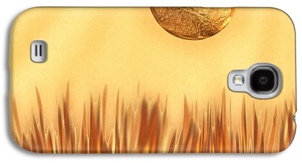 Texas Artist Galaxy S4 Cases - Golden Summers Galaxy S4 Case by Wendy J St Christopher