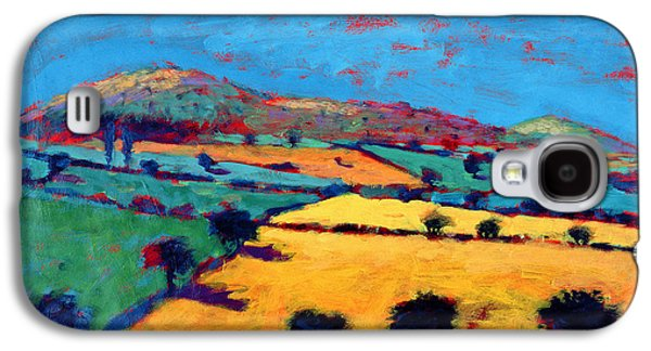 Landscapes Photographs Galaxy S4 Cases - Golden Valley Acrylic On Card Galaxy S4 Case by Paul Powis