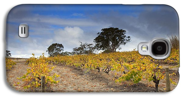 Landscape Photographs Galaxy S4 Cases - Golden Vines Galaxy S4 Case by Mike  Dawson