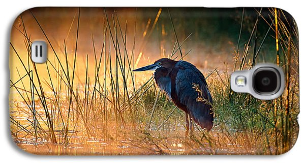 Bed Galaxy S4 Cases - Goliath heron with sunrise over misty river Galaxy S4 Case by Johan Swanepoel