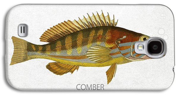 Aquarium Fish Galaxy S4 Cases - Comber Galaxy S4 Case by Aged Pixel