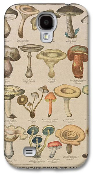 Good And Bad Mushrooms Galaxy S4 Case by French School