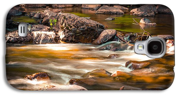 Water Filter Galaxy S4 Cases - Gooseberry Downstream Galaxy S4 Case by Shutter Happens Photography