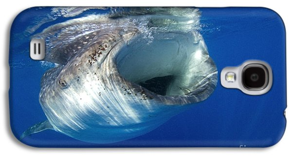 Plankton Galaxy S4 Cases - Greedy Galaxy S4 Case by Aaron Whittemore