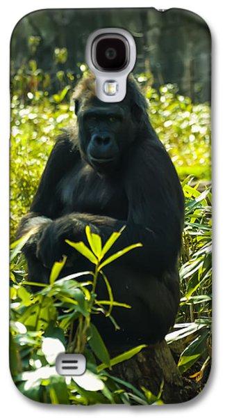 Gorilla Digital Galaxy S4 Cases - Gorilla sitting on a stump Galaxy S4 Case by Chris Flees