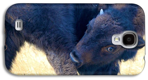 Bison Sculptures Galaxy S4 Cases - Got an Itch Galaxy S4 Case by Peggy Detmers