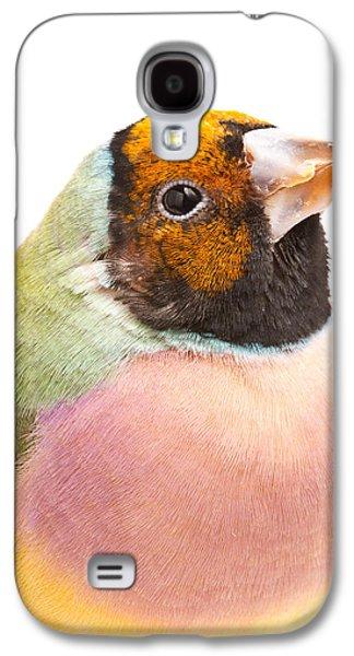 Gouldian Finch Erythrura Gouldiae Galaxy S4 Case by David Kenny