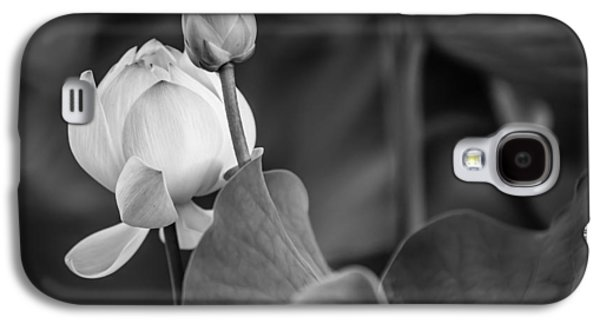 Balck Art Galaxy S4 Cases - Graceful Lotus. Balck and White. Pamplemousses Botanical Garden. Mauritius Galaxy S4 Case by Jenny Rainbow