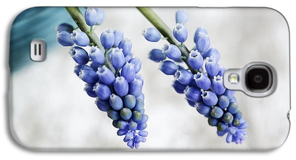 Blue Grapes Galaxy S4 Cases - Grape Hyacinth Galaxy S4 Case by Nailia Schwarz