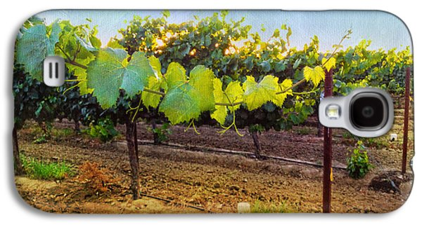 Grape Vine Galaxy S4 Cases - Grape Vine in the Vineyard Galaxy S4 Case by Shari Warren